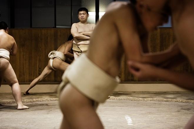 Một ngày khổ luyện của các võ sĩ sumo nhí Nhật Bản ảnh 10