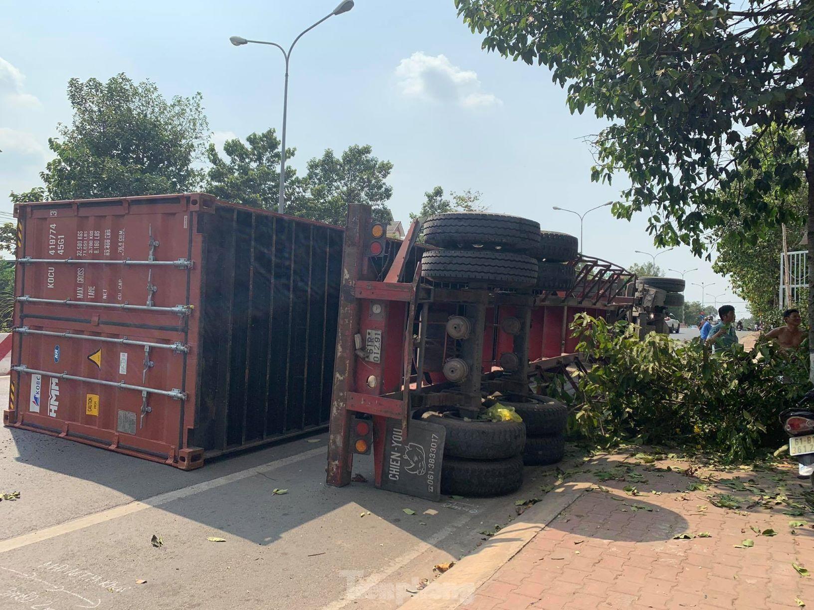Xe container hạ gục cây xanh, lật ngang giữa đường vì tài xế ngủ gật ảnh 1