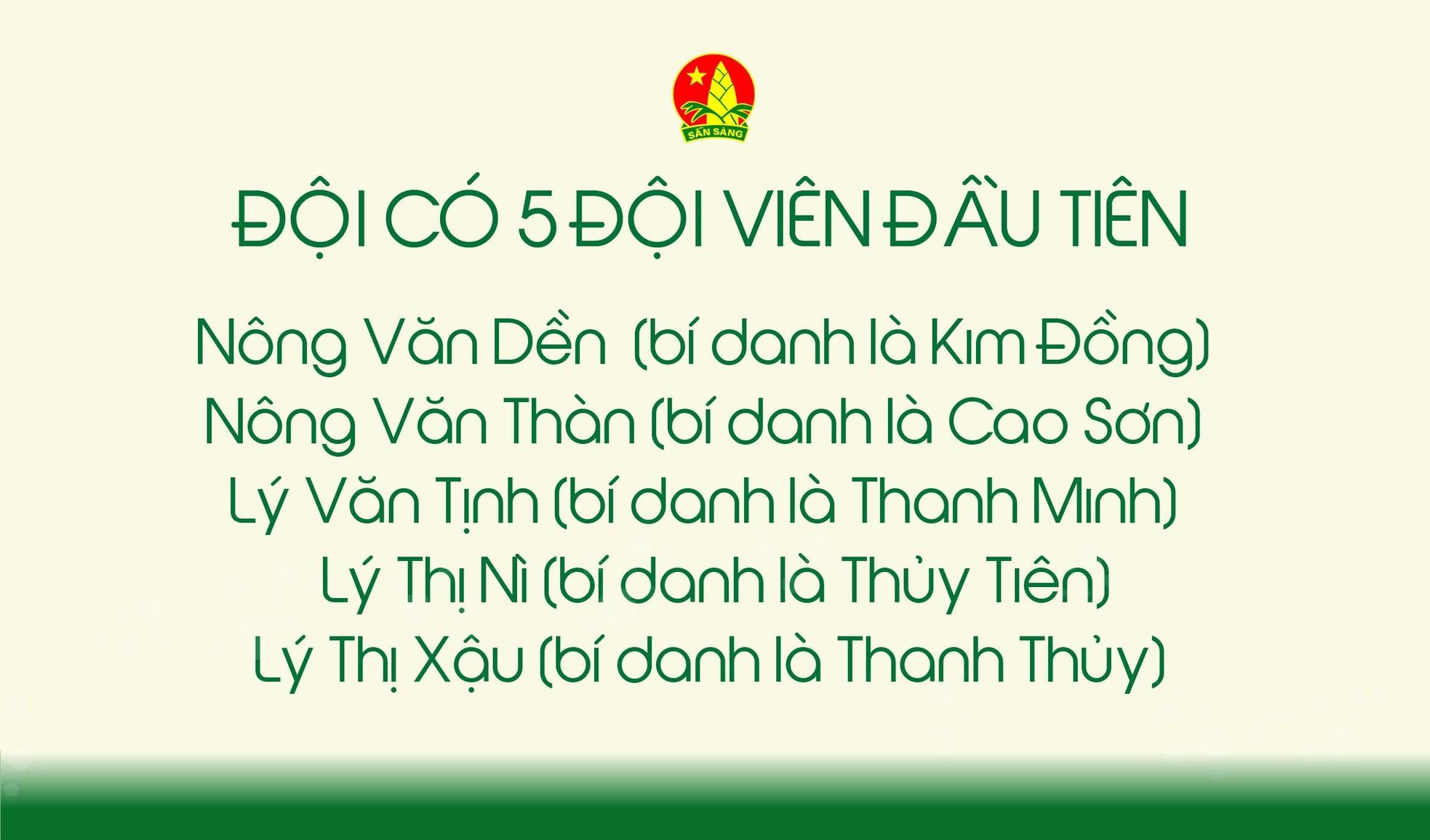 Đội TNTP Hồ Chí Minh – 80 mùa hoa lớn lên cùng đất nước ảnh 3