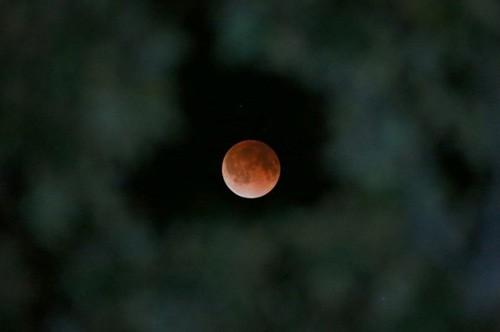 Độc đáo cảnh 'trăng máu' ở khắp thế giới ảnh 3