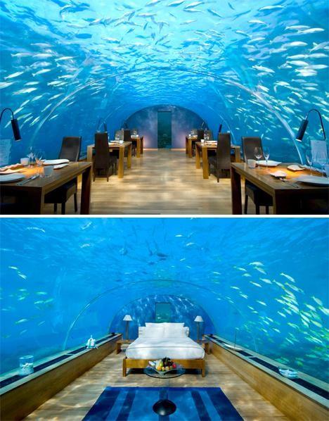 Khám phá 7 kỳ quan thế giới dưới đáy đại dương ảnh 4