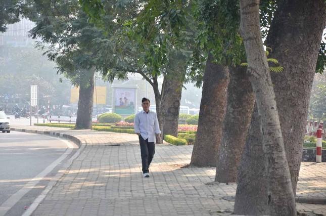 Chặt hạ, di chuyển hàng cây trước ĐH Giao thông ảnh 5