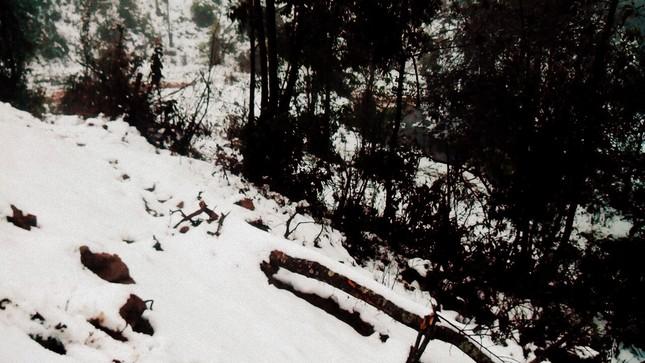 """Dân """"phượt"""" vượt đường lầy lội lên Y Tý ngắm tuyết ảnh 2"""