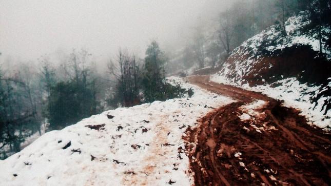 """Dân """"phượt"""" vượt đường lầy lội lên Y Tý ngắm tuyết ảnh 6"""