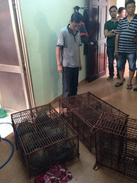 Bắt giữ đối tượng buôn bán động vật hoang dã ảnh 1