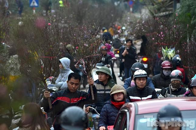 Ùn tắc hàng km trên đường vào chợ hoa Quảng An ảnh 11