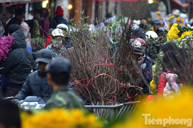 Ùn tắc hàng km trên đường vào chợ hoa Quảng An ảnh 9