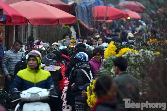 Ùn tắc hàng km trên đường vào chợ hoa Quảng An ảnh 10