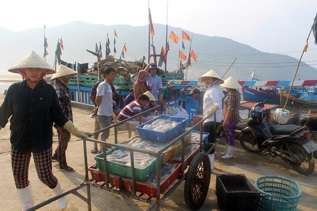 Ngư dân Hà Tĩnh dong thuyền ra khơi ảnh 1