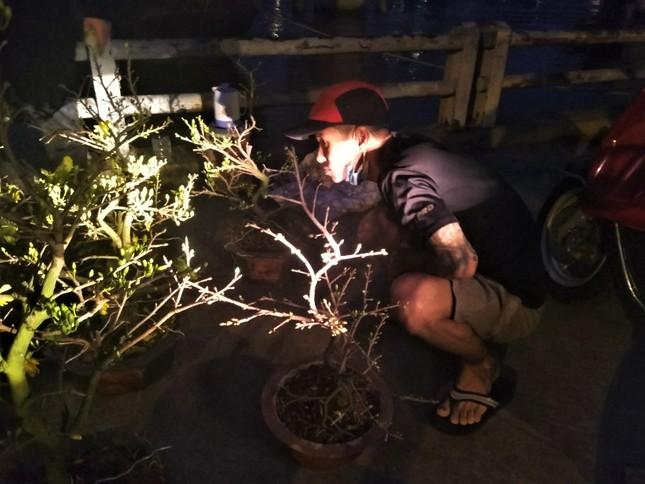Đêm giao thừa người TPHCM soi đèn mua hoa Tết giải cứu nông dân ảnh 1