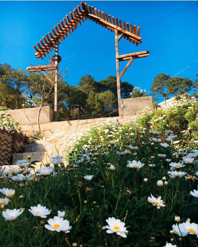 Cặp vợ chồng trẻ bỏ thành phố, lên Đà Lạt xây homestay kiểu Nhật xinh lung linh ảnh 8