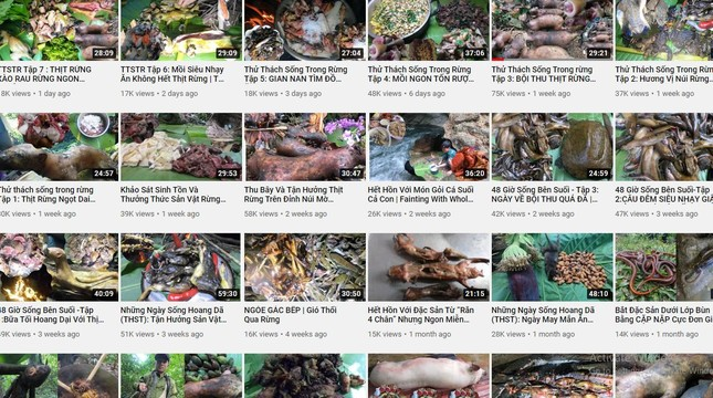 Youtuber - cây nhiều trái nhưng đầy gai và không dễ hái ảnh 2