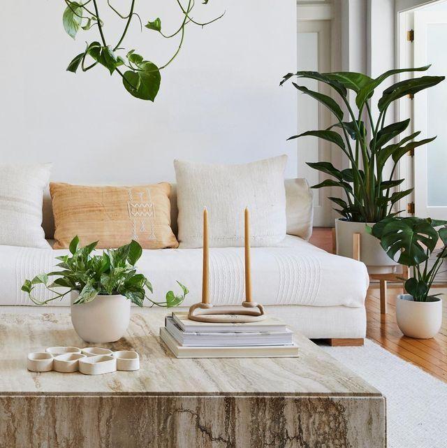 Home décor: Làm mới không gian sống mà không cần phải sửa nhà, đập bỏ phức tạp ảnh 4