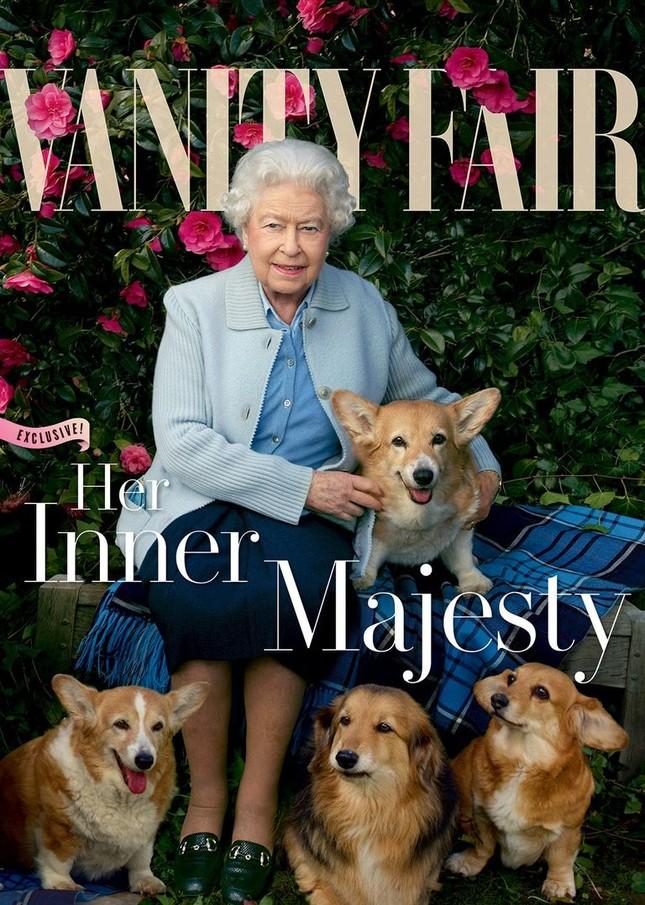 Bầy Corgi của Nữ hoàng Elizabeth thì nổi tiếng quá rồi, nhưng có những điều bạn chưa biết ảnh 8