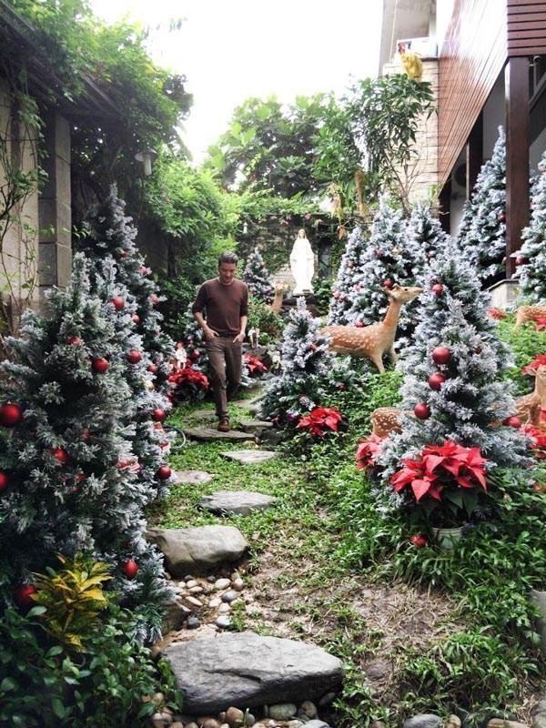 Đàm Vĩnh Hưng tung ảnh nhà ngổn ngang, nói lí do hủy Noel ảnh 11
