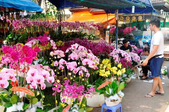 Đường phố Sài Gòn ngập hoa, nhộn nhịp không khí Tết ảnh 10