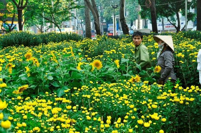Đường phố Sài Gòn ngập hoa, nhộn nhịp không khí Tết ảnh 3