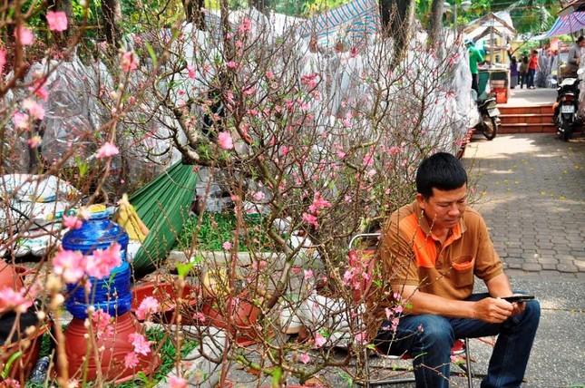 Đường phố Sài Gòn ngập hoa, nhộn nhịp không khí Tết ảnh 4
