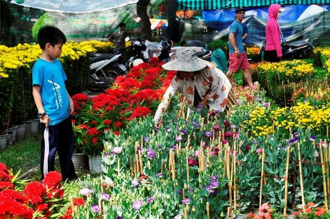 Đường phố Sài Gòn ngập hoa, nhộn nhịp không khí Tết ảnh 6