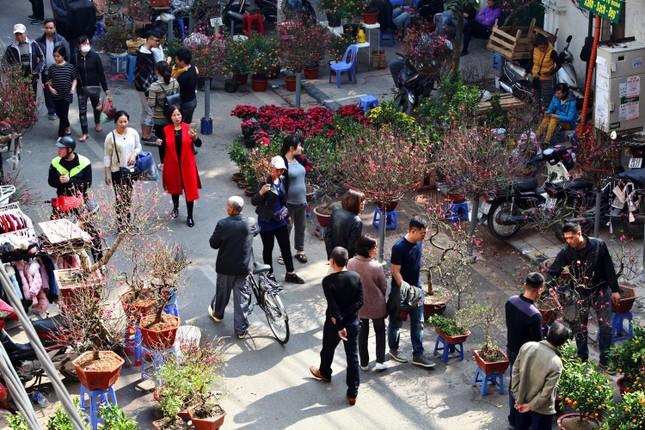 Chiều cuối năm trên chợ hoa phố cổ Hàng Lược ảnh 1