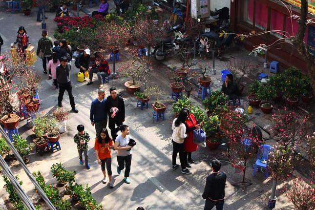 Chiều cuối năm trên chợ hoa phố cổ Hàng Lược ảnh 2