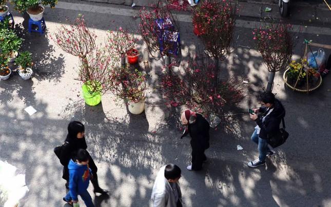 Chiều cuối năm trên chợ hoa phố cổ Hàng Lược ảnh 3