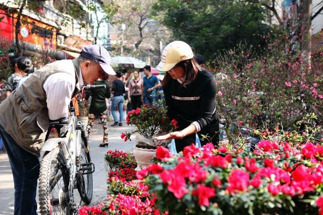 Chiều cuối năm trên chợ hoa phố cổ Hàng Lược ảnh 4