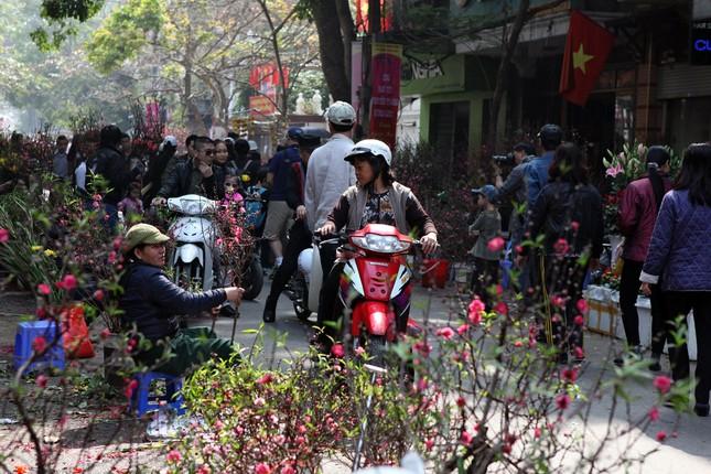 Chiều cuối năm trên chợ hoa phố cổ Hàng Lược ảnh 5