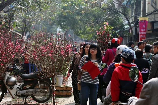 Chiều cuối năm trên chợ hoa phố cổ Hàng Lược ảnh 6