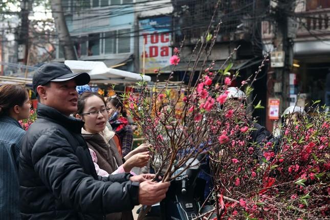 Chiều cuối năm trên chợ hoa phố cổ Hàng Lược ảnh 7