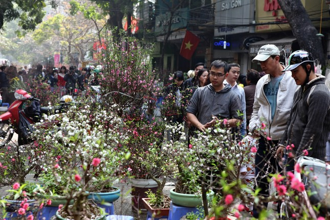 Chiều cuối năm trên chợ hoa phố cổ Hàng Lược ảnh 8