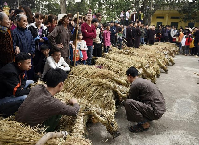 Lạ kỳ lễ hội trâu rơm, bò rạ ở đồng bằng sông Hồng ảnh 5