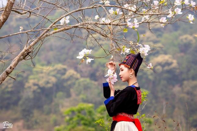 Người đẹp Hoa Ban dự thi Hoa hậu Việt Nam 2020 ảnh 1