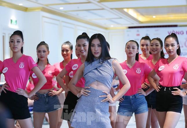 Tiểu Vy mặc gợi cảm hướng dẫn thí sinh hoa hậu catwalk và nhắn nhủ điều quan trọng ảnh 4