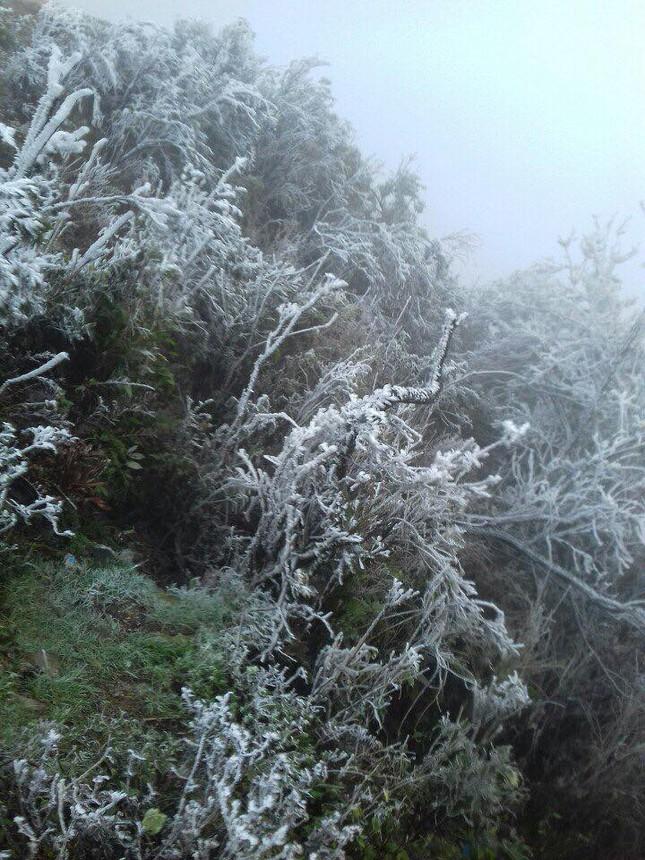 Băng tuyết phủ dầy trên đỉnh Mẫu Sơn ảnh 1