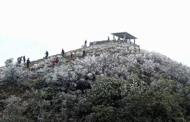 Lạng Sơn rét kỷ lục, băng tuyết phủ trắng Mẫu Sơn ảnh 1