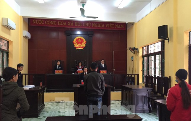 Lạng Sơn: Đốt cỏ, gây cháy rừng, lĩnh án 2 năm tù ảnh 1