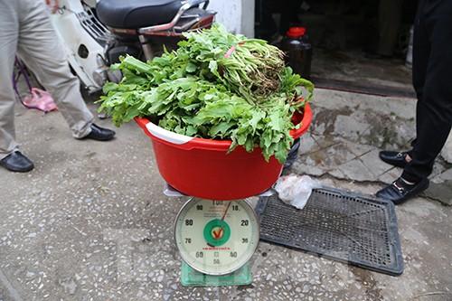 Kho chứa thú rừng và cây thuốc phiện ở thành phố Lạng Sơn ảnh 2