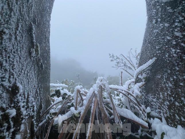 Băng tuyết phủ trắng Mẫu Sơn, hàng trăm người đổ lên xem gây tắc đường ảnh 8