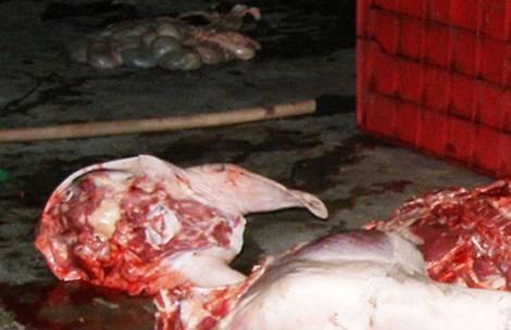 Khoảng 3h sáng 6/2, đoàn kiểm tra liên ngành huyện Bình Chánh bắt điểm giết mổ heo lậu ở xã Vĩnh Lộc B. Nơi đây, thịt heo để lăn lóc trên nền đất có nhiều phân heo.