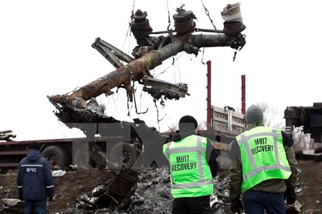 Chuyên gia Hà Lan trở lại hiện trường vụ tai nạn máy bay MH17 ảnh 1