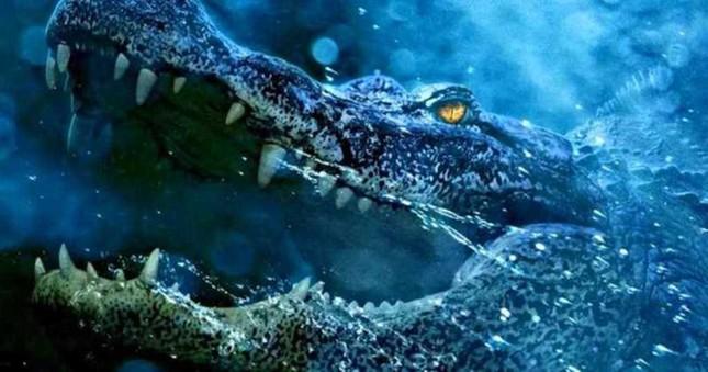 1001 thắc mắc: Vì sao cá sấu nuốt mồi dưới nước mà không bị sặc? ảnh 1
