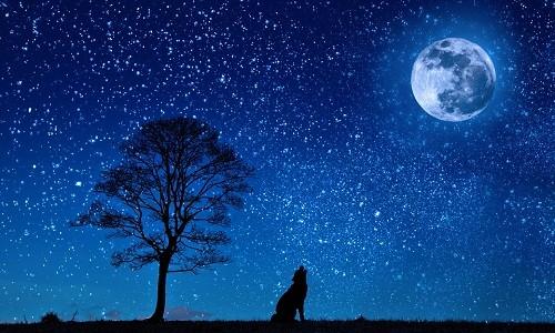 1001 thắc mắc: Lí do gì khiến hành tinh không nhấp nháy như ngôi sao? ảnh 2