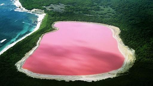 1001 thắc mắc: Hồ Hillier nằm ở đâu, vì sao nước có màu hồng 'ma quái'? ảnh 6