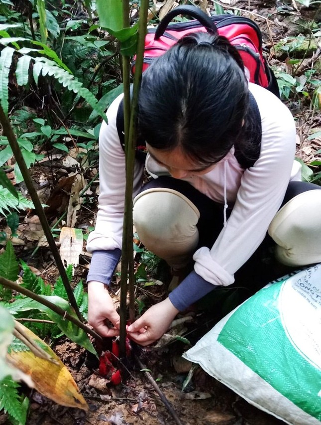 Chuyện ở trọ, đi rừng, làm khoa học của nữ Phó Giáo sư trẻ nhất nước ảnh 2