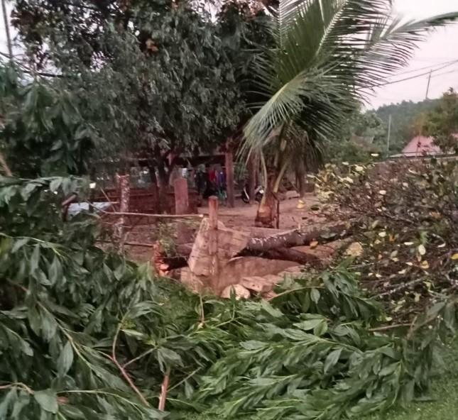 Lốc xoáy kèm mưa đá gây thiệt hại nặng ở huyện biên giới Nghệ An ảnh 5