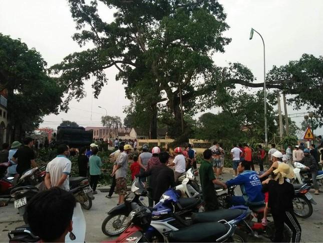 Cây đa hơn 300 tuổi ở Nghệ An bất ngờ gãy đổ, 4 học sinh bị thương ảnh 1