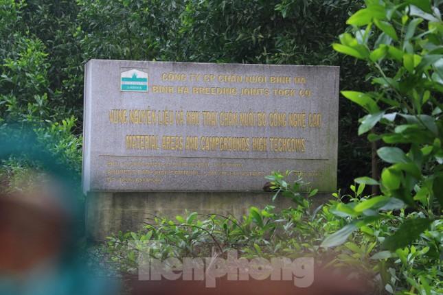 'Hồi sinh' dự án bò Bình Hà: Tỉnh ủy Hà Tĩnh yêu cầu thẩm định tính khả thi ảnh 5