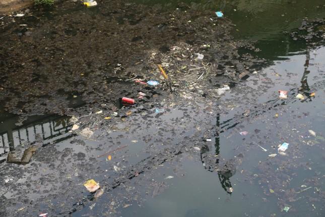 Ô nhiễm nghiêm trọng tại di tích hào Thành cổ Vinh ảnh 3