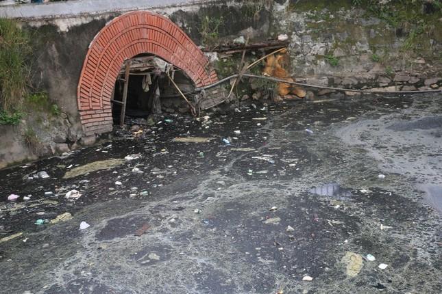 Nạo vét, xử lý ô nhiễm tại di tích Hào Thành cổ Vinh ảnh 1